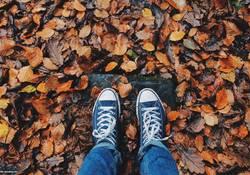 Pünktlich zum Herbstbeginn keine kalten Füße: Heiz-Checks zur Steigerung der Energieeffizienz