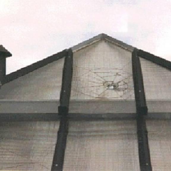 dach des staendehaus